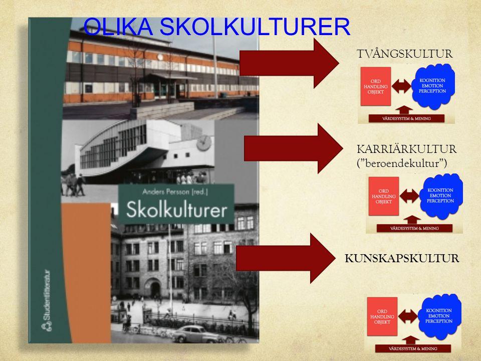 OLIKA SKOLKULTURER TVÅNGSKULTUR KARRIÄRKULTUR ( beroendekultur )