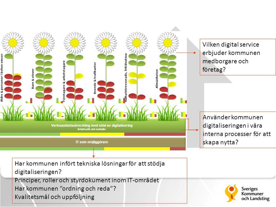 Vilken digital service erbjuder kommunen medborgare och företag