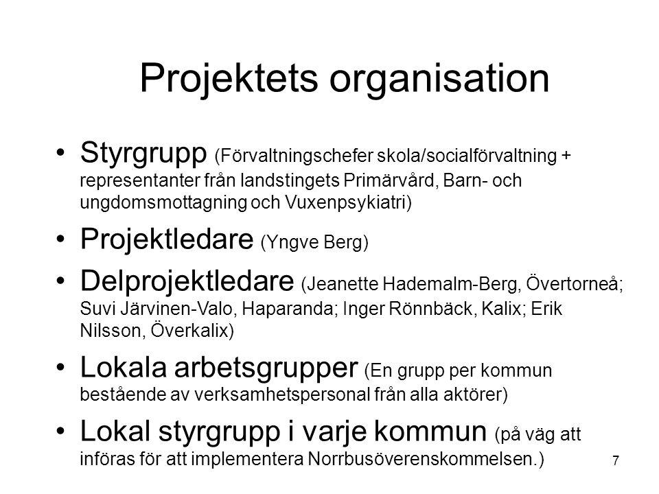 Projektets organisation