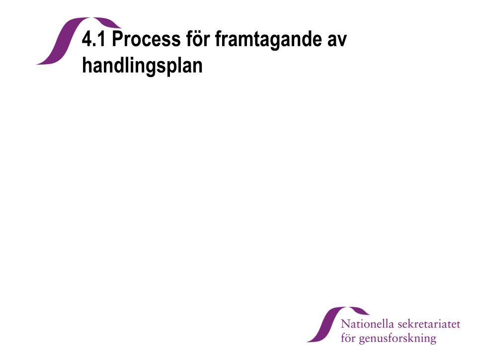 4.1 Process för framtagande av handlingsplan