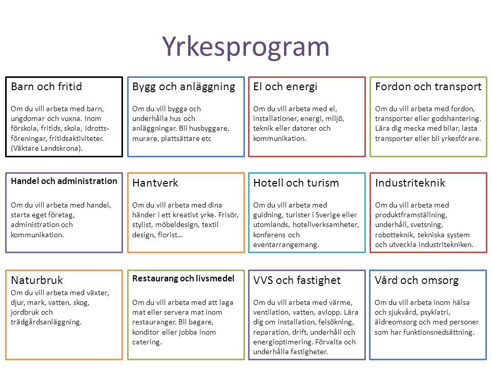 Yrkesprogram Barn och fritid Bygg och anläggning El och energi