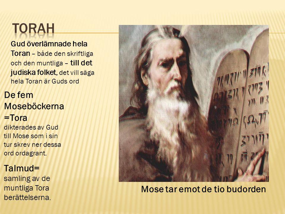 Torah De fem Moseböckerna =Tora