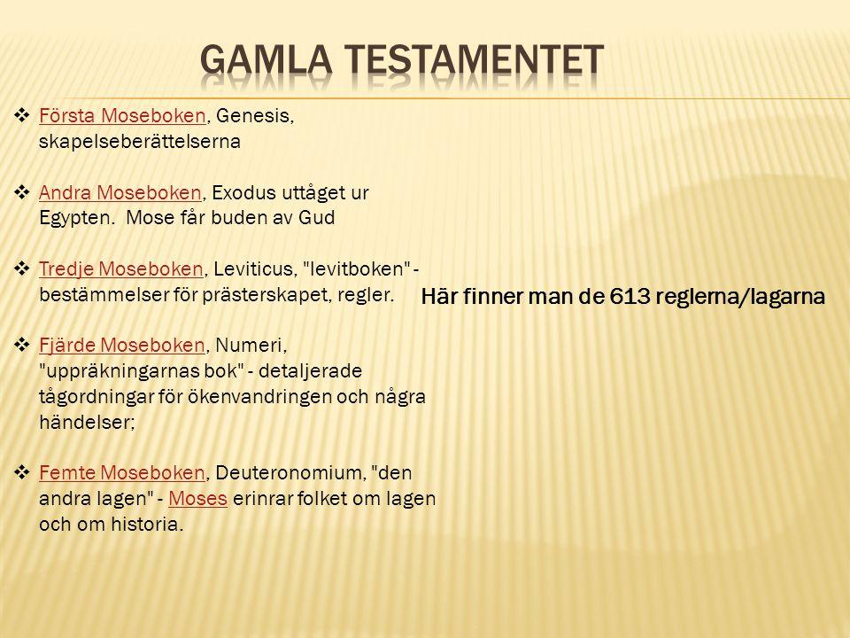 Gamla Testamentet Här finner man de 613 reglerna/lagarna