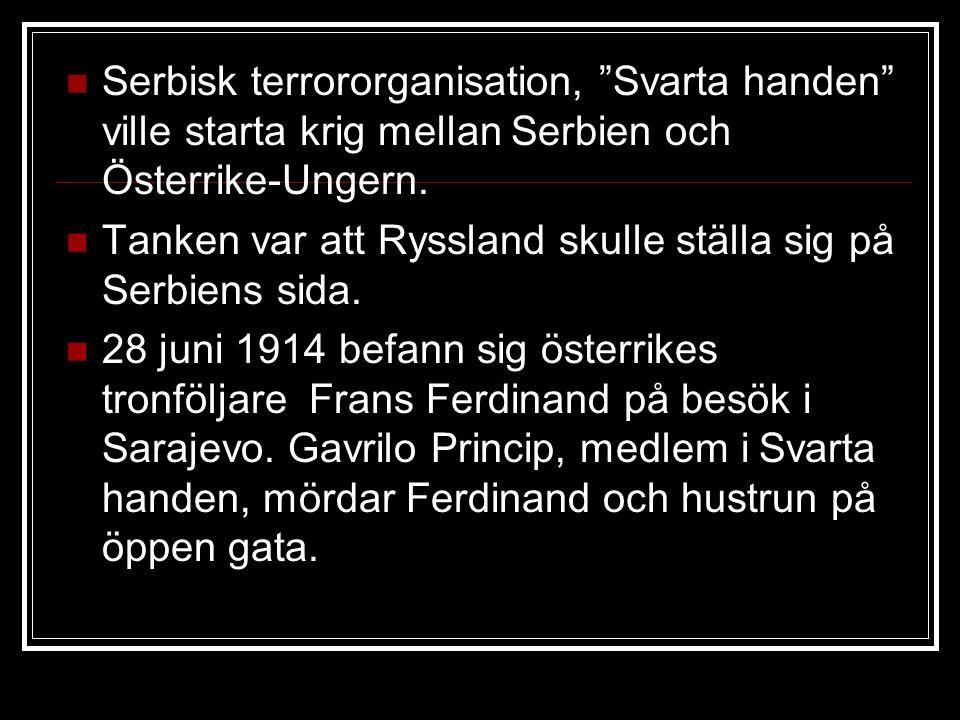 Serbisk terrororganisation, Svarta handen ville starta krig mellan Serbien och Österrike-Ungern.