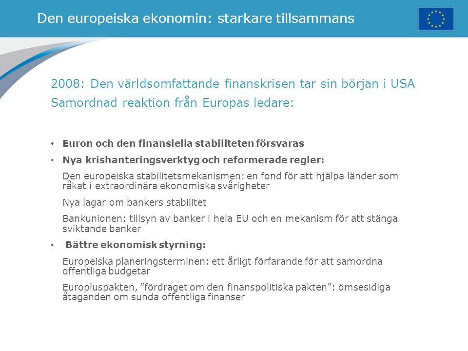 Den europeiska ekonomin: starkare tillsammans
