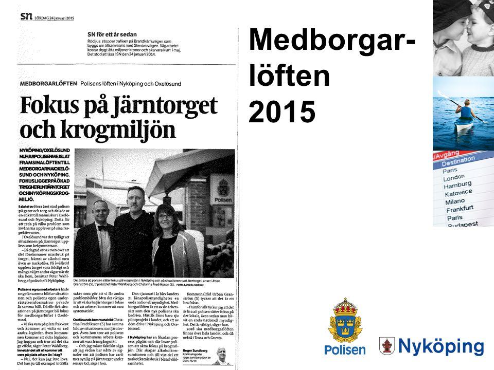 Medborgar-löften 2015 ANNA o PETER
