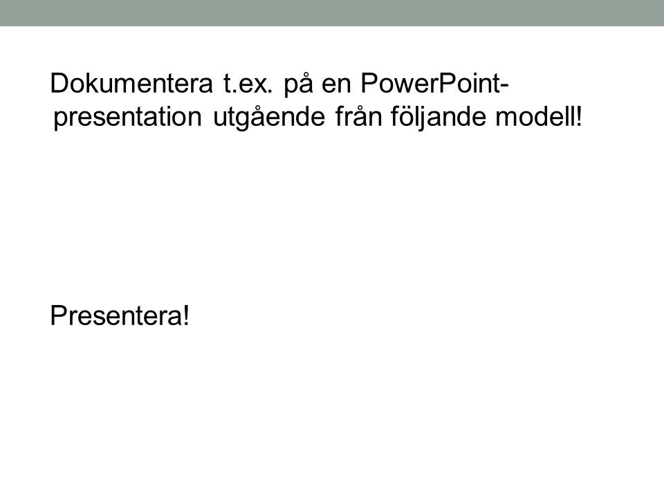 Dokumentera t.ex. på en PowerPoint-presentation utgående från följande modell!