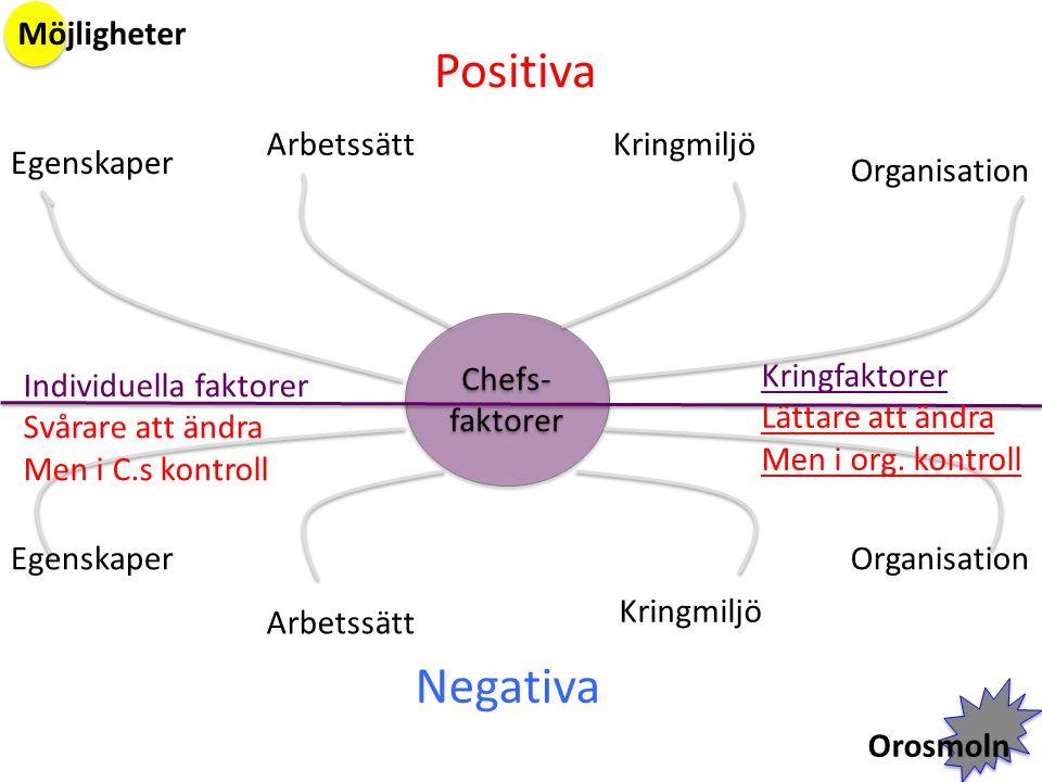 Positiva Negativa Möjligheter Arbetssätt Kringmiljö Egenskaper