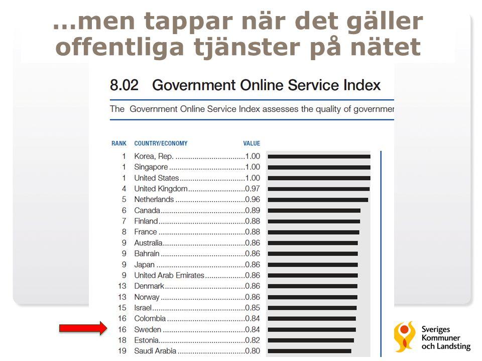 …men tappar när det gäller offentliga tjänster på nätet