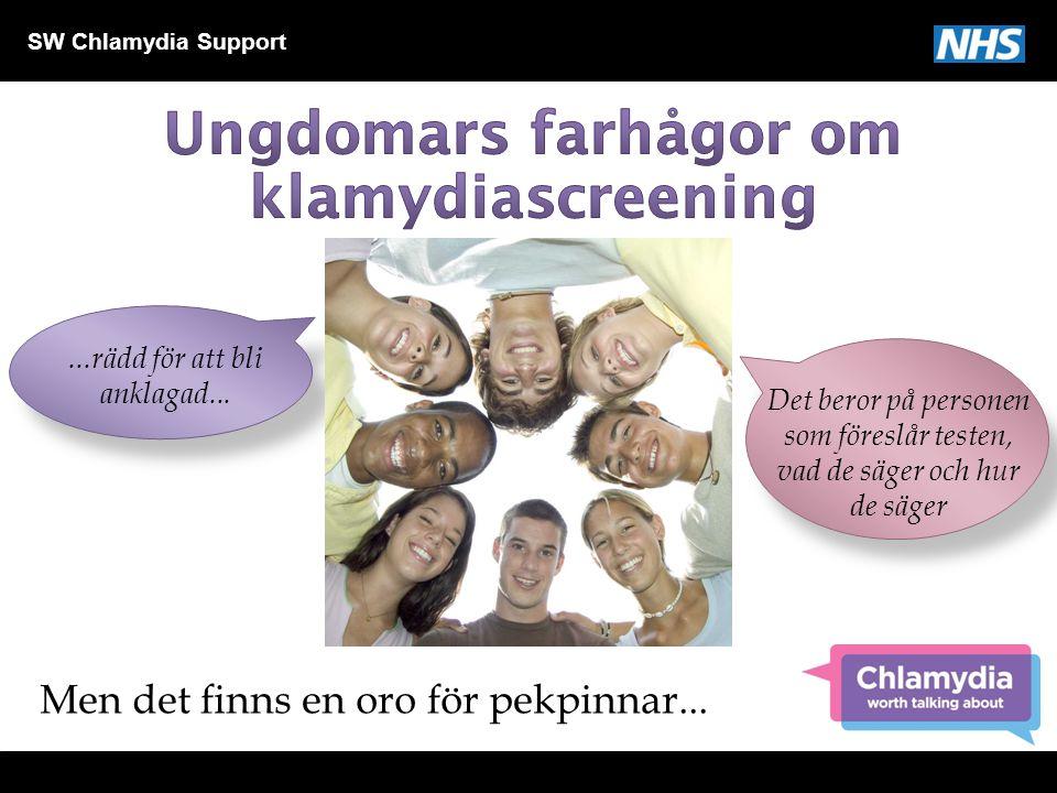 Ungdomars farhågor om klamydiascreening