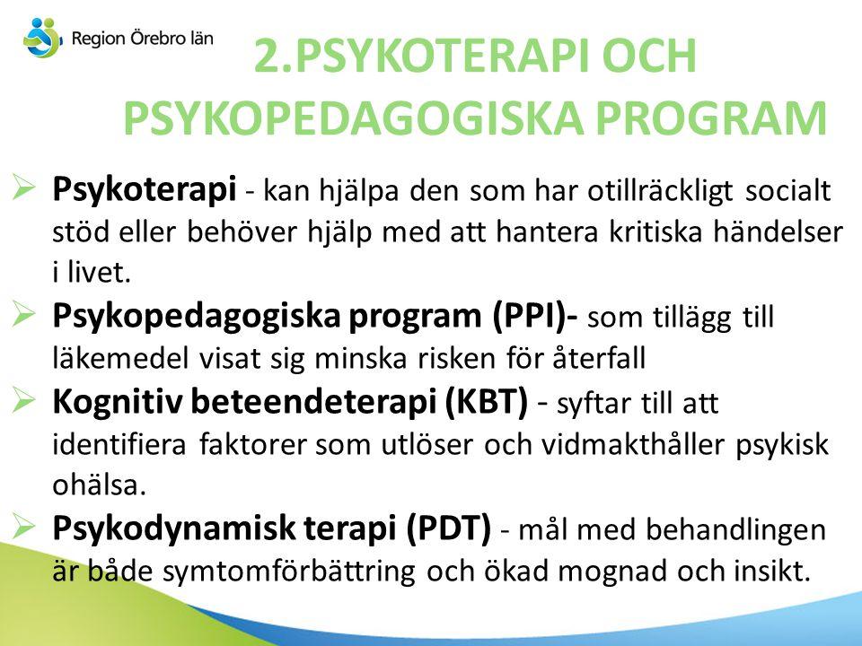 2.PSYKOTERAPI OCH PSYKOPEDAGOGISKA PROGRAM