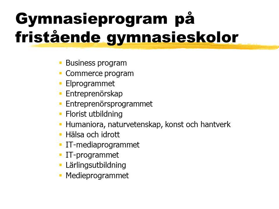 Gymnasieprogram på fristående gymnasieskolor