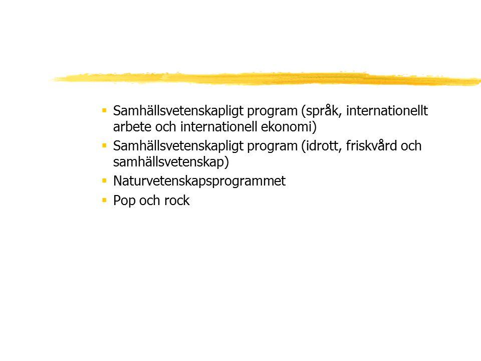 Samhällsvetenskapligt program (språk, internationellt arbete och internationell ekonomi)