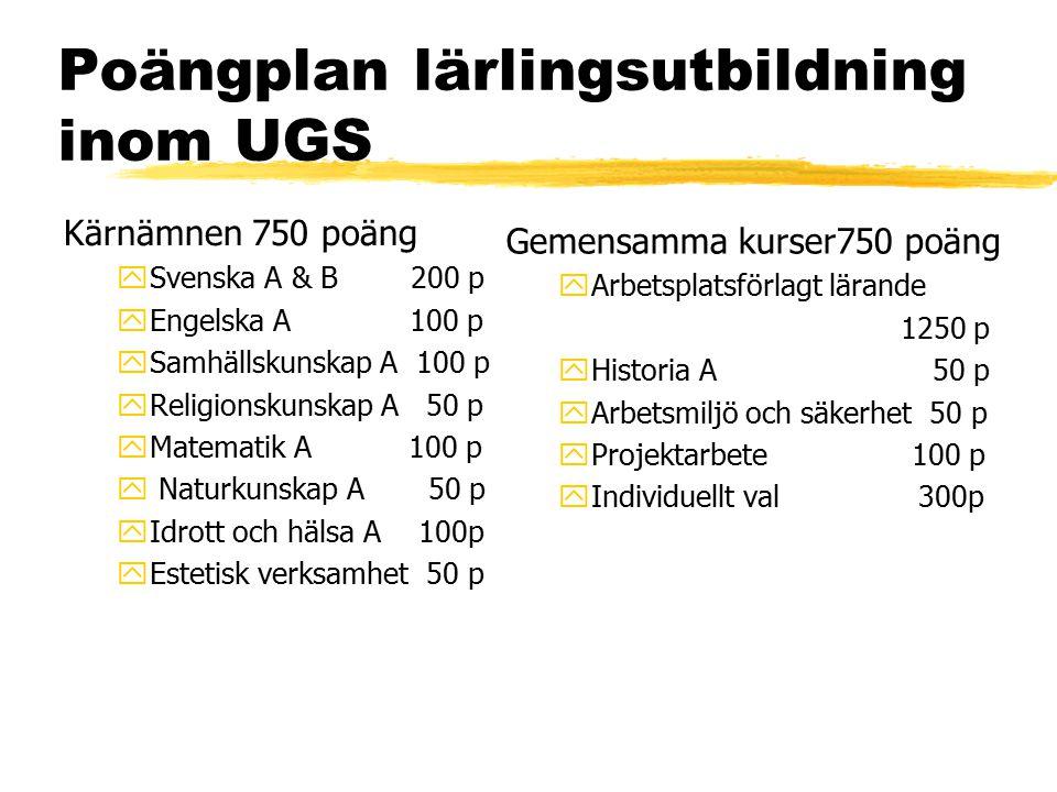 Poängplan lärlingsutbildning inom UGS