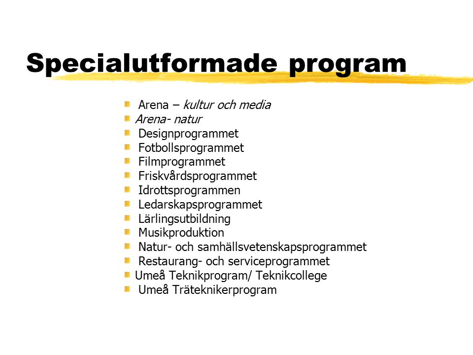 Specialutformade program