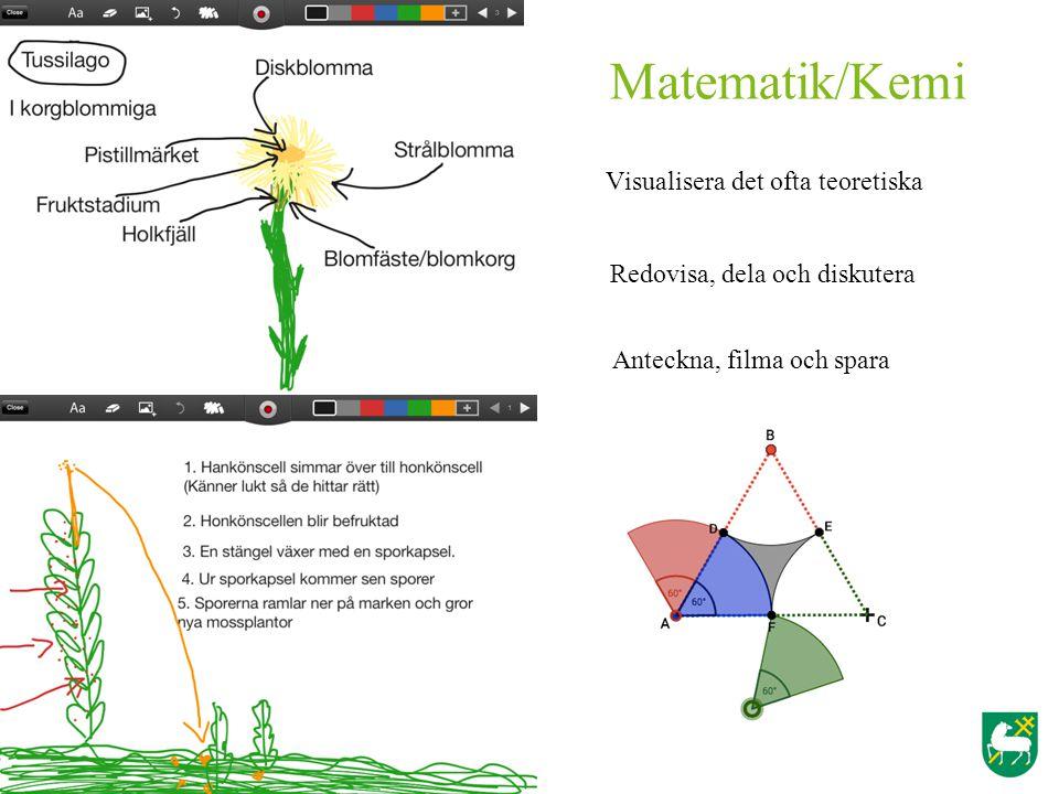Matematik/Kemi Visualisera det ofta teoretiska