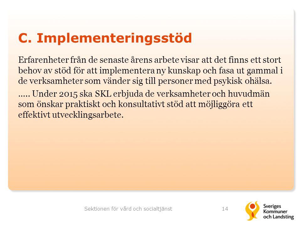 C. Implementeringsstöd