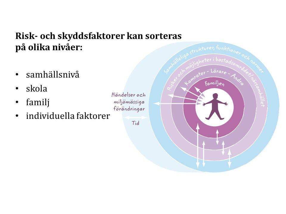 Risk- och skyddsfaktorer kan sorteras på olika nivåer: