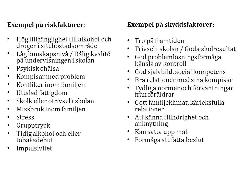 Exempel på riskfaktorer: