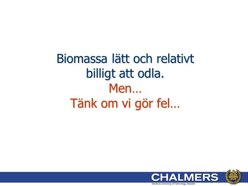 Biomassa lätt och relativt billigt att odla. Men… Tänk om vi gör fel…