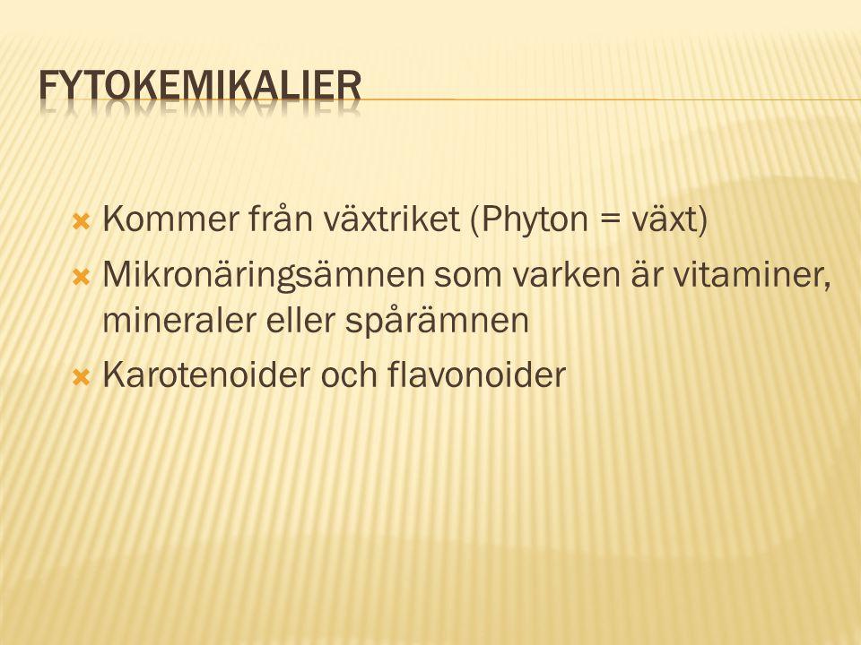 Fytokemikalier Kommer från växtriket (Phyton = växt)