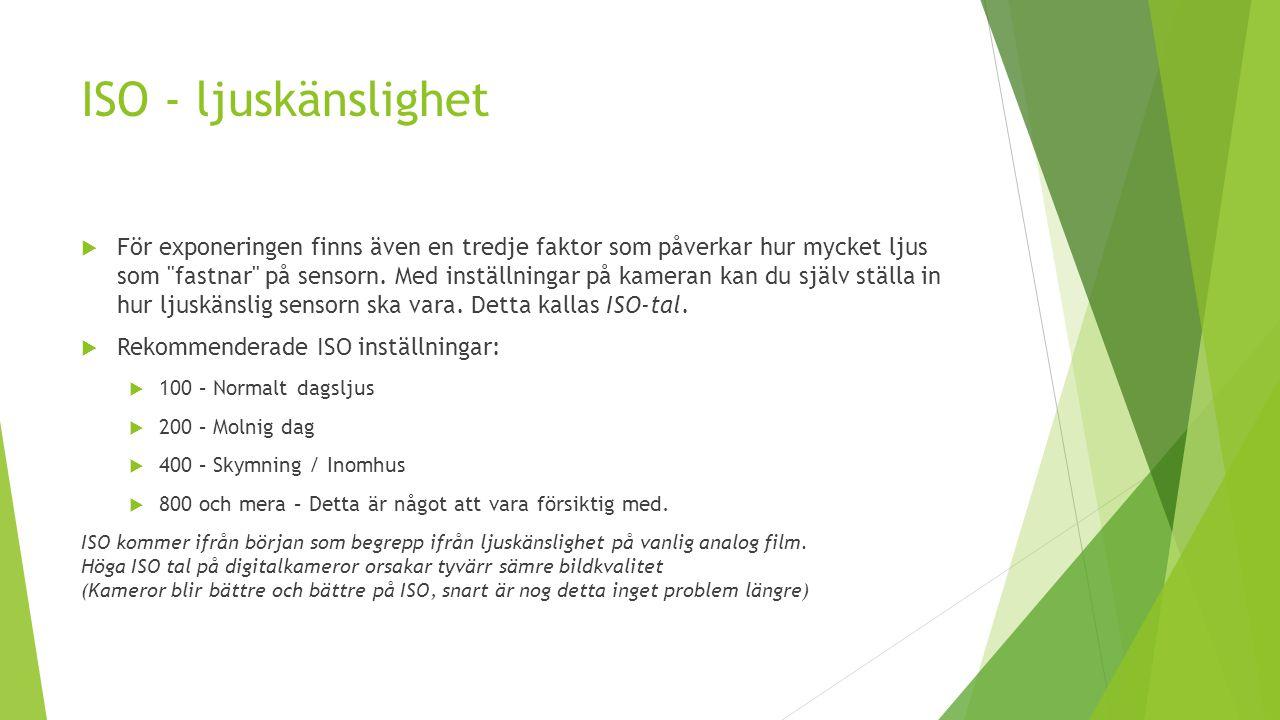 ISO - ljuskänslighet
