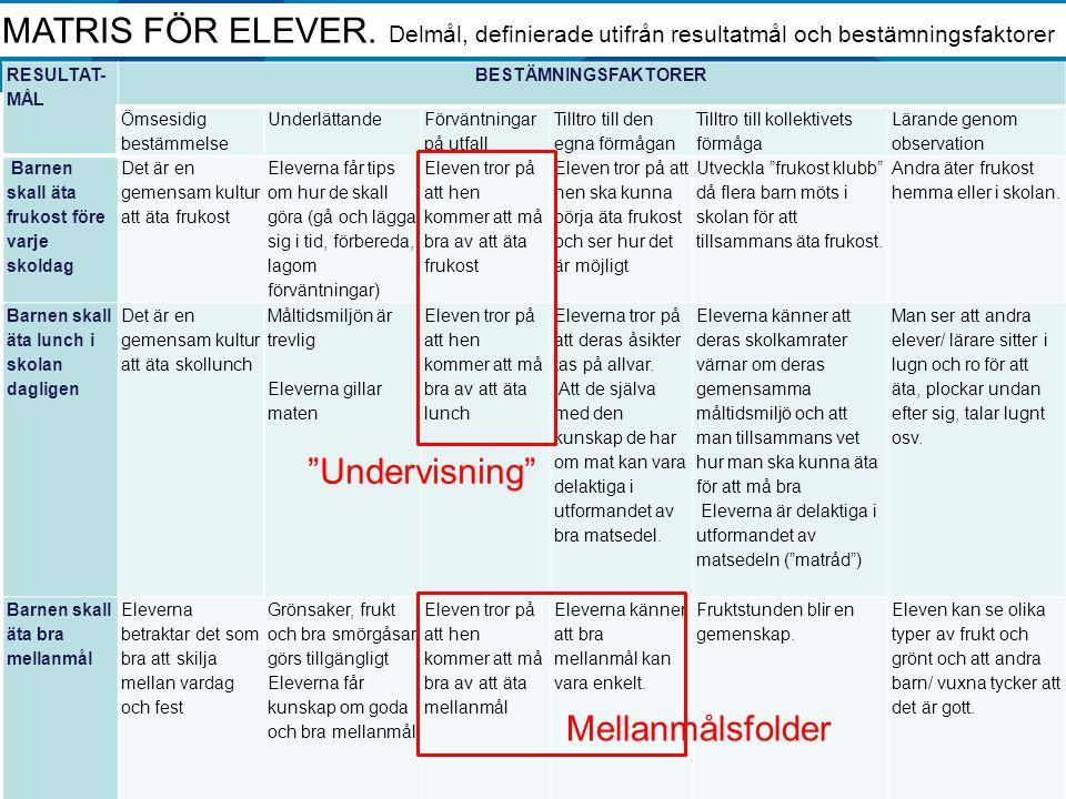 MATRIS FÖR ELEVER. Delmål, definierade utifrån resultatmål och bestämningsfaktorer