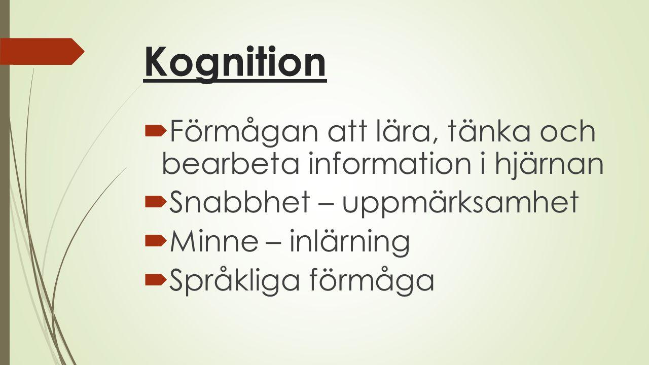 Kognition Förmågan att lära, tänka och bearbeta information i hjärnan
