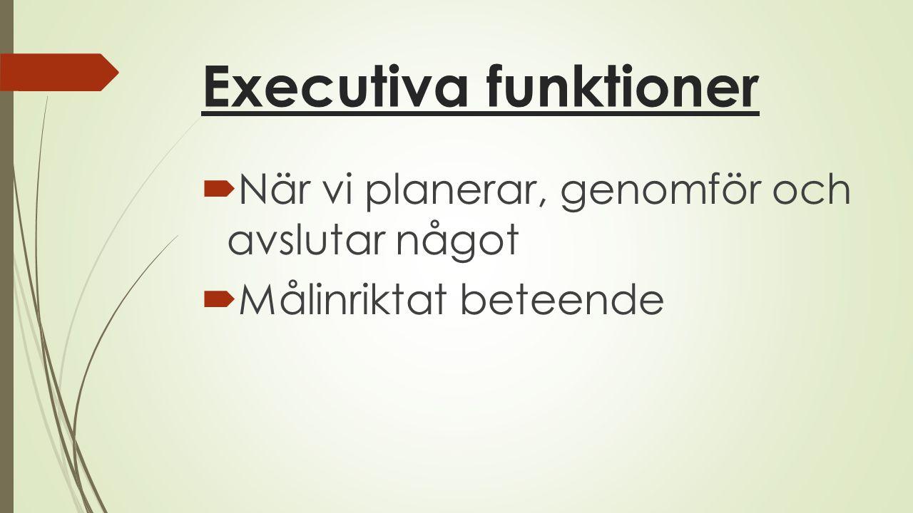 Executiva funktioner När vi planerar, genomför och avslutar något