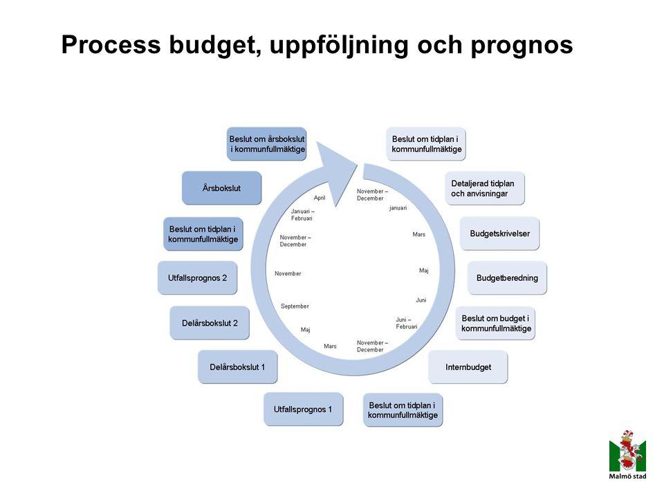 Process budget, uppföljning och prognos