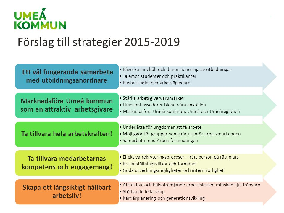 Förslag till strategier 2015-2019