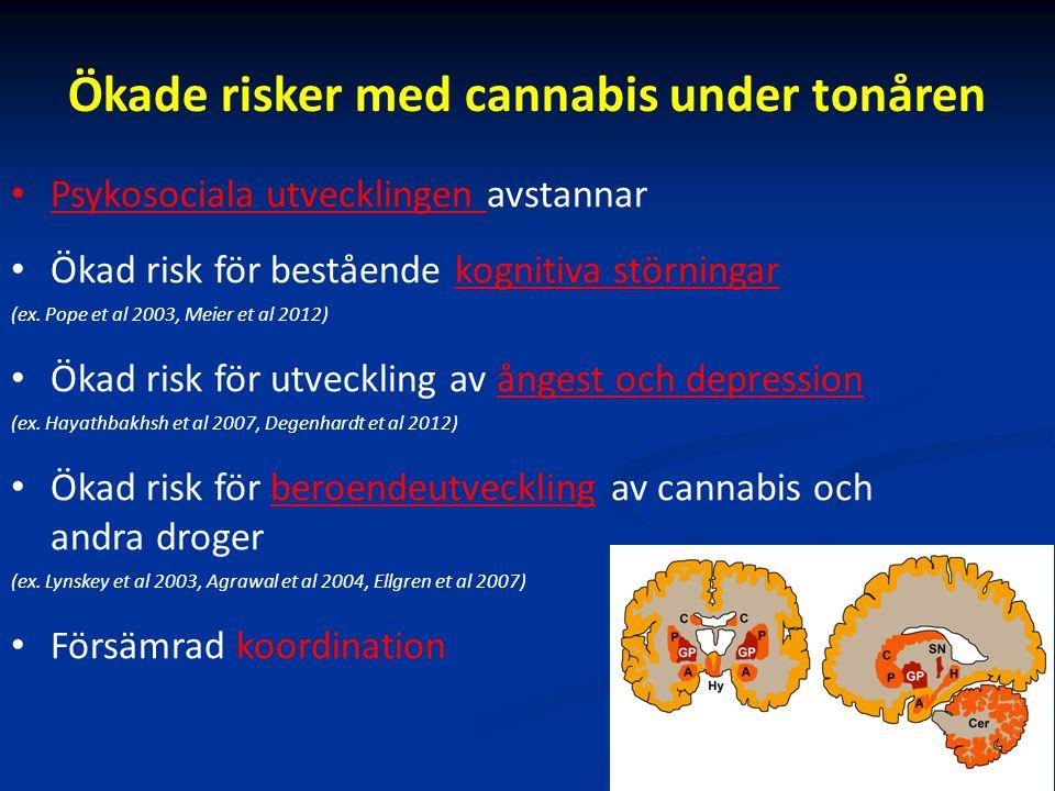 Ökade risker med cannabis under tonåren