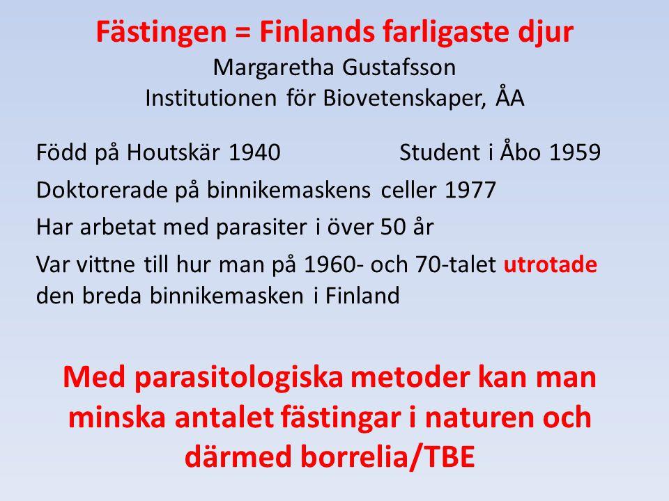 Fästingen = Finlands farligaste djur Margaretha Gustafsson Institutionen för Biovetenskaper, ÅA