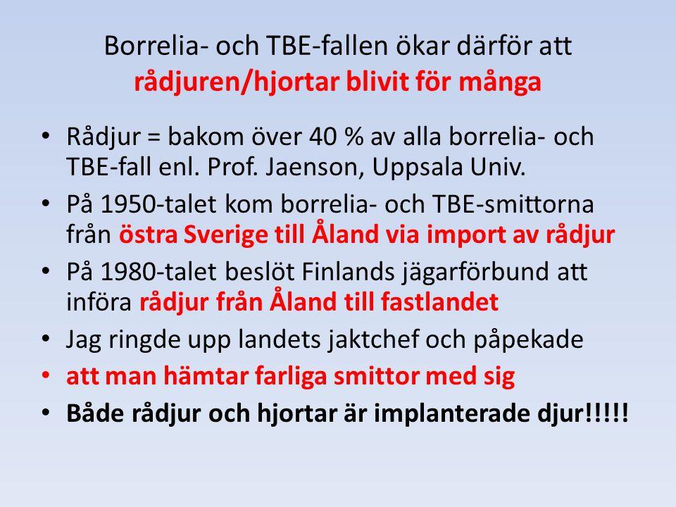 Borrelia- och TBE-fallen ökar därför att rådjuren/hjortar blivit för många