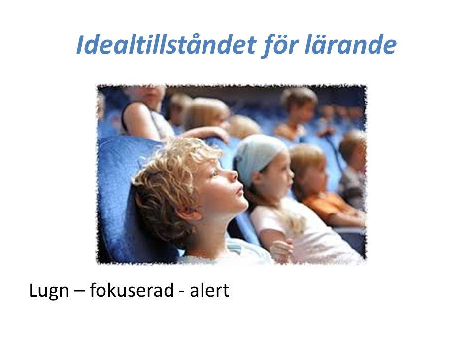 Idealtillståndet för lärande