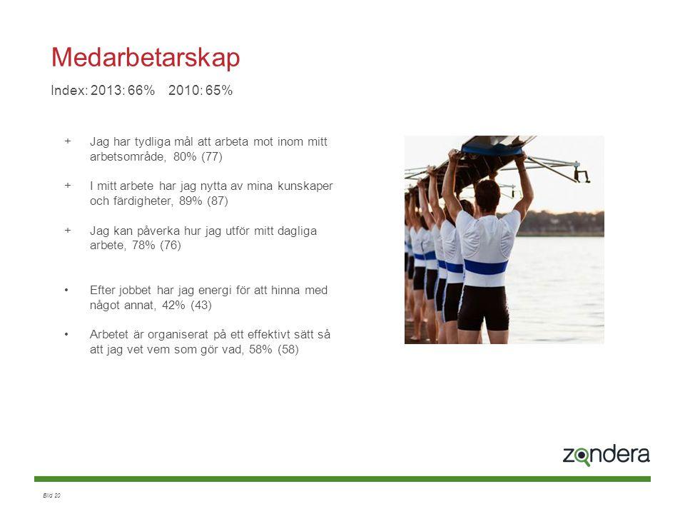Medarbetarskap Index: 2013: 66% 2010: 65%
