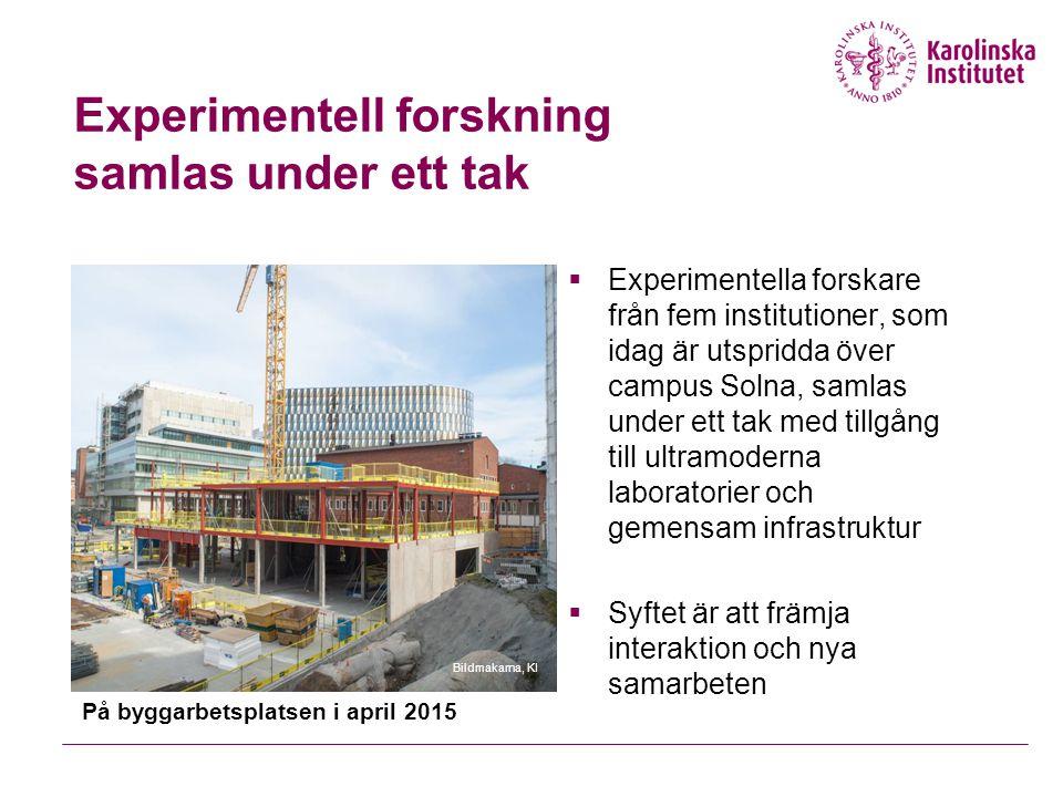 Experimentell forskning samlas under ett tak