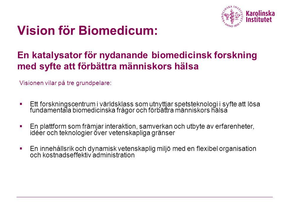 Vision för Biomedicum: En katalysator för nydanande biomedicinsk forskning med syfte att förbättra människors hälsa