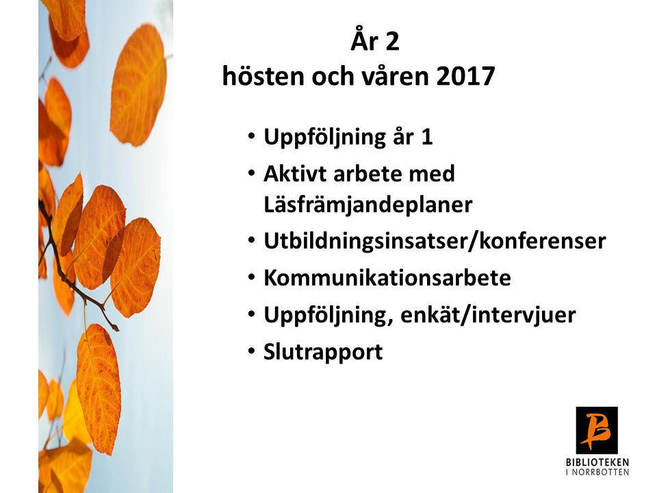 År 2 hösten och våren 2017 Uppföljning år 1