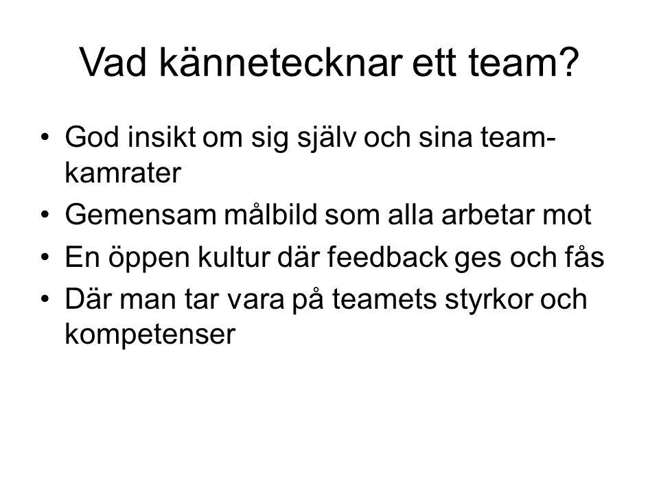 Vad kännetecknar ett team