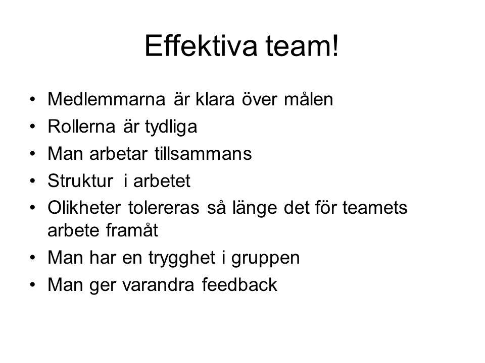 Effektiva team! Medlemmarna är klara över målen Rollerna är tydliga