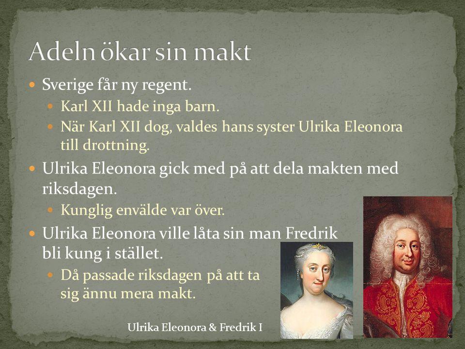 Adeln ökar sin makt Sverige får ny regent.