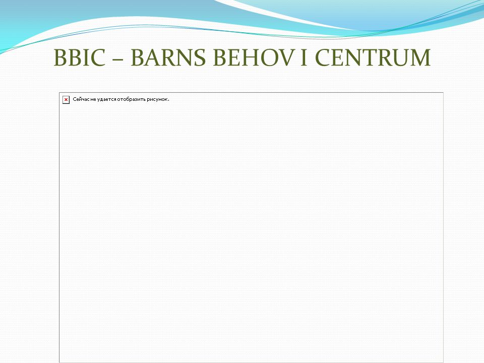 BBIC – BARNS BEHOV I CENTRUM