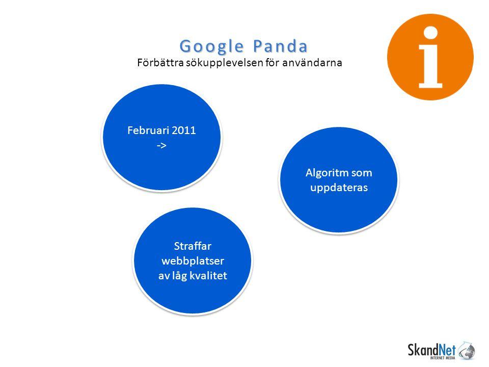 Google Panda Förbättra sökupplevelsen för användarna