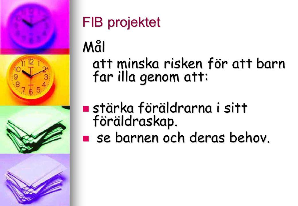 FIB projektet Målgrupp