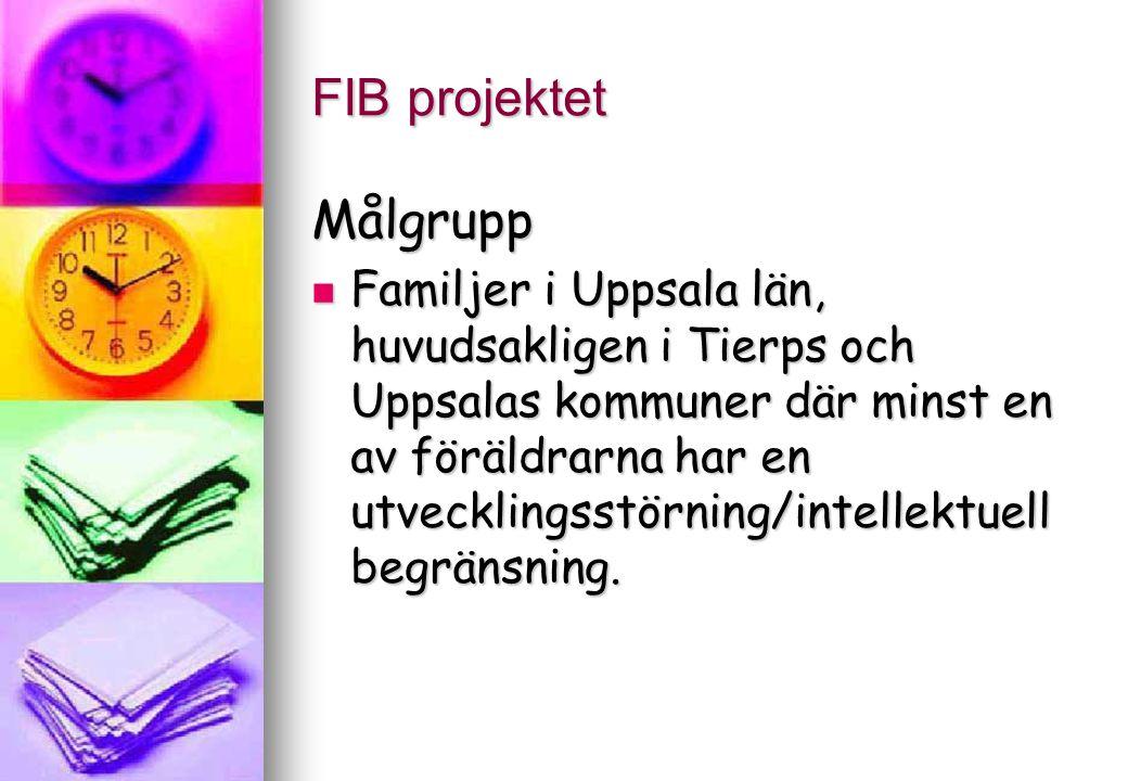 FIB projektet Det finns behov av: att beskriva och inventera behov