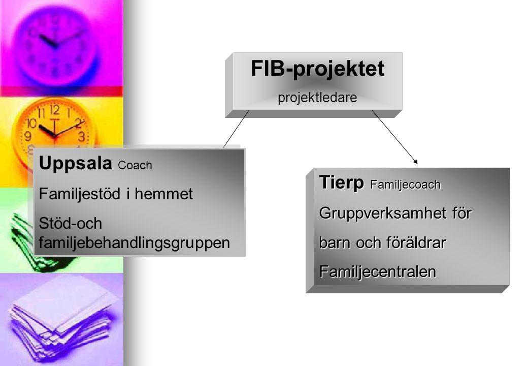 FIB projektet I Uppsala utvecklas metoder och förhållningssätt med utgångspunkt från hemterapeuternas verksamhet.