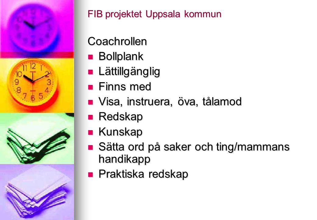 FIB projektet
