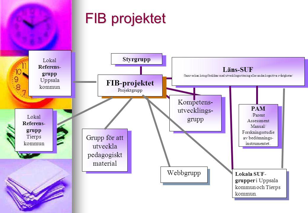 FIB – projektet i Tierps Kommun