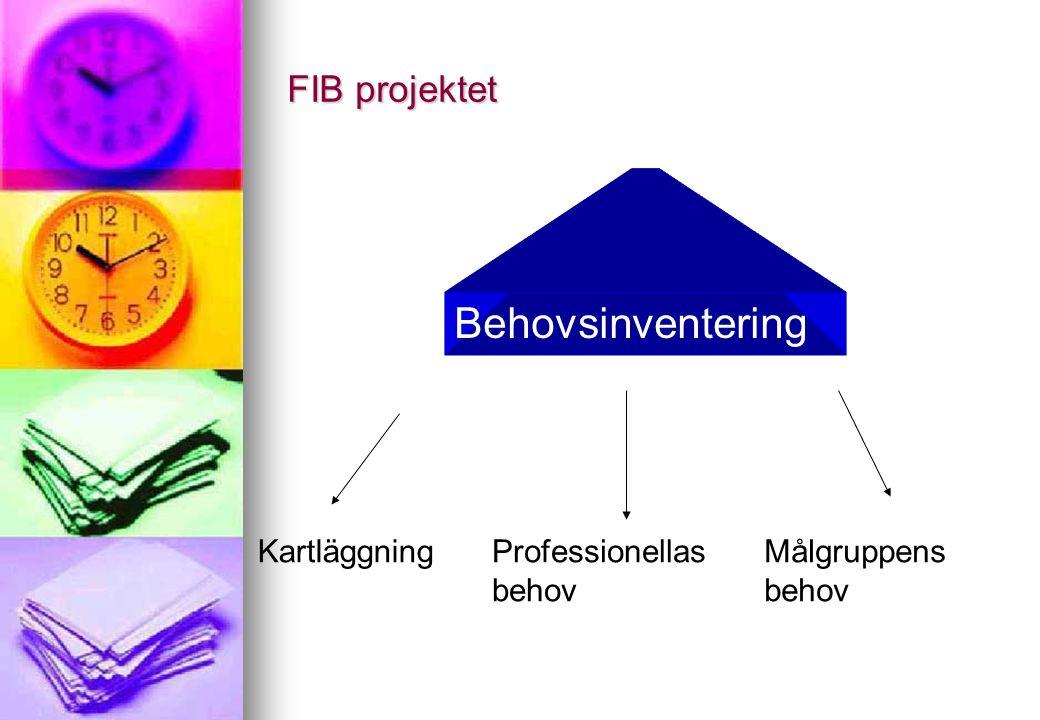 FIB projektet Metodutveckling Kompetens-/kunskapsutveckling